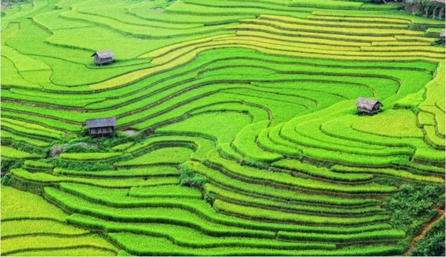 ท่องเที่ยวประเทศเพื่อนบ้าน เวียดนาม